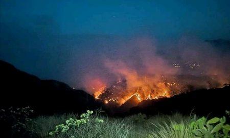 Nicolás Elizalde, Hidalgo, incendio forestal, siniestro, nacional