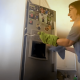 mujer, serpiente, refrigerador, lo viral, video, animal, YouTube