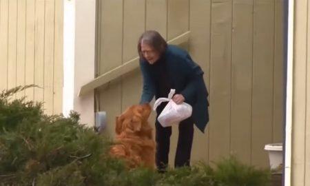 Perro, entregas, adultos mayores, Estados Unidos, viral