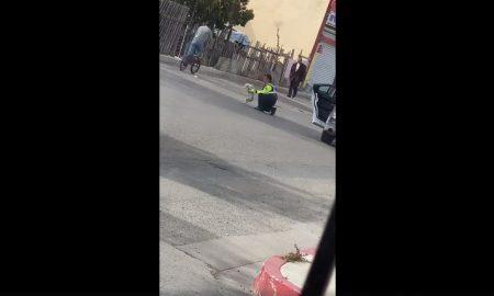 Policía, perro, perrito, atropellado, ayuda calle, colonia Obrera, Tijuana, video, viral