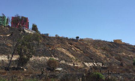 calcinado, reporte, Delegación Cerro Colorado