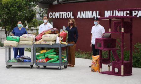 mascotas, donativos, minerva terrazas