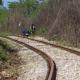Tramo, Tren Maya, suspensión, Chiapas, deforestación