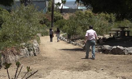 Playas de Tijuana, parque, Los Sauces