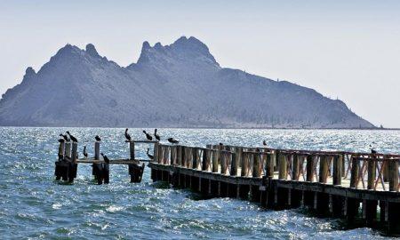 Sonora, visitantes, Kino, Bahía de Kino, Hermosillo, playas, covid-19