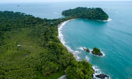 Costa Rica, reforestación, árboles, programa