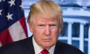 Donald Trump, votaciones, fraude, elecciones, EEUU