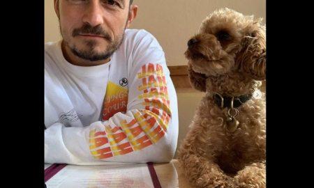 Orlando Bloom, perro, Mighty, mascota, tatuaje, pérdida