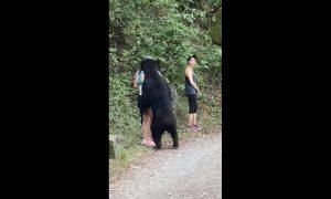 oso, jovenes, deportistas, mujeres, camino, Chipinque, Monterrey, Nuevo León