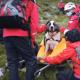 rescate, san bernardo, perro, montaña, inglaterra, perdido