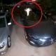 video, Tinker Bell, cámara de seguridad, video viral, Los Ángeles, California, hada