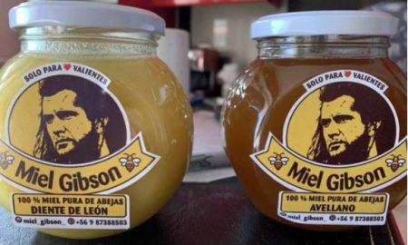 Miel Gibson, Mel Gibson, actor, miel, demanda, derechos,