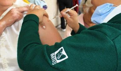 campaña de vacunación contra sarampión y rubéola, Campañas de Vacunación, imss, sarampión, UMF,