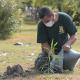 UABC, reforestación,