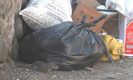 Rampa Morelos, acumulación de basura,