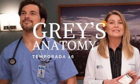 Grey's Anatomy, Netflix, serie, medicina, streaming, temporada