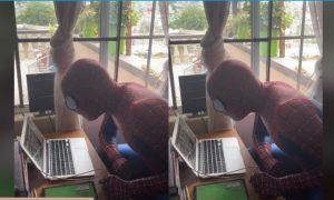 Maestro, Spider-Man, clase, en línea, educación, video viral