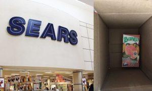 Compra, iPhone SE, Sears, mujer, afectada, Profeco, conciliación