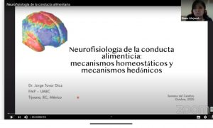 semana, cerebro, conferencia