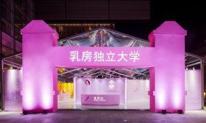 Cáncer, cáncer de mama, día rosa, edificios, Argentina, París