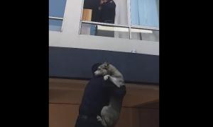 policías, CDMX, perro, rescate, incendio, video viral