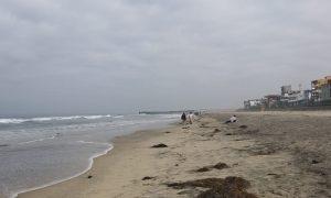 Playas de tijuana, apertura de playas, turistas, sana distancia, protocolos de salud,