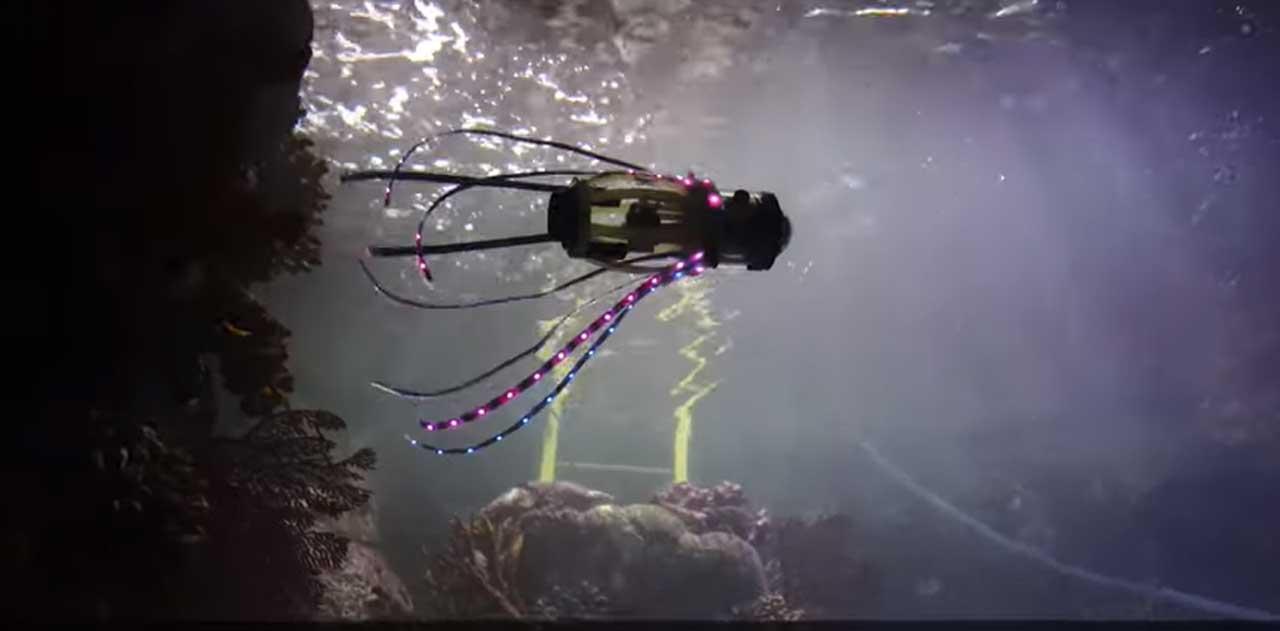 squidbot-pulpo-robot-fotos-mar
