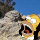 Roca, Homero Simpson, comunidad, turismo, video viral