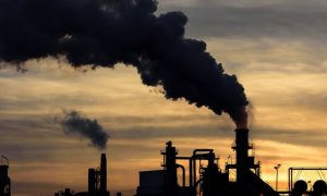 cambio climático, covid-19, pandemia