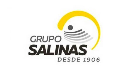 Grupo Salinas, logo