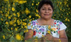 Peydy Pech, apicultora, maya, premio, ambiental, Monsanto