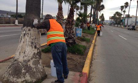 Remozamiento, bulevar costero, Ayuntamiento de Ensenada, Ayuntamiento de Ensenada,