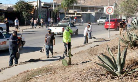 acumulación de basura, jornada de limpieza, Hacienda Santa María,