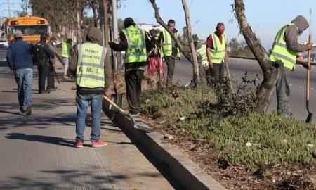 jornada de limpieza, bulevar Rosas Magallón, basura,
