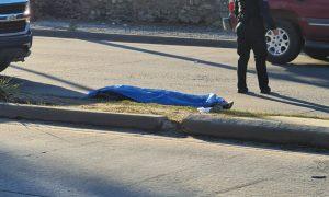cadáver, vía rápida, hallazgo, policía