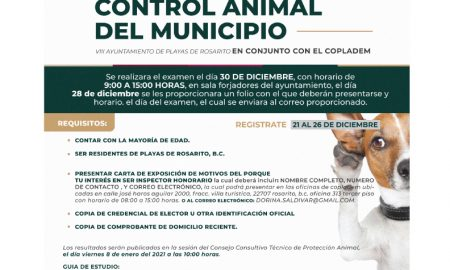 control animal, convocatoria, inspector honorario
