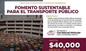 SEST, gas natural, transporte